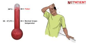 temperatur kroppen feber